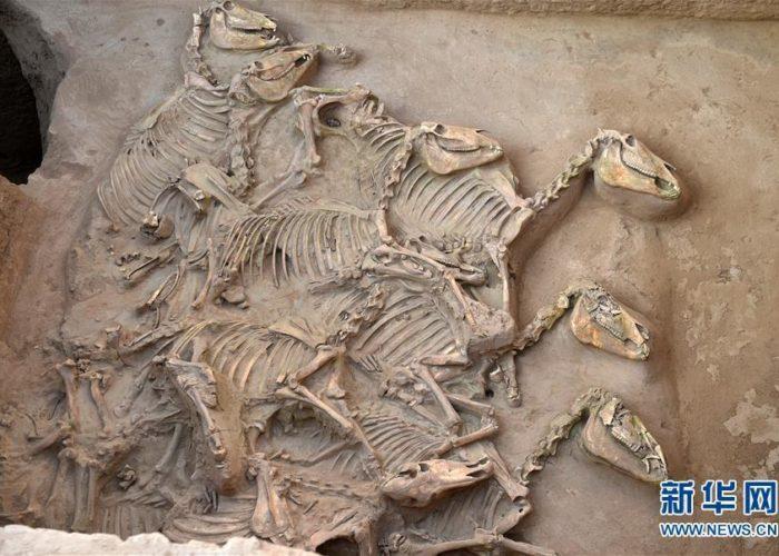 Топ археологических открытий в Китае за 2018 год