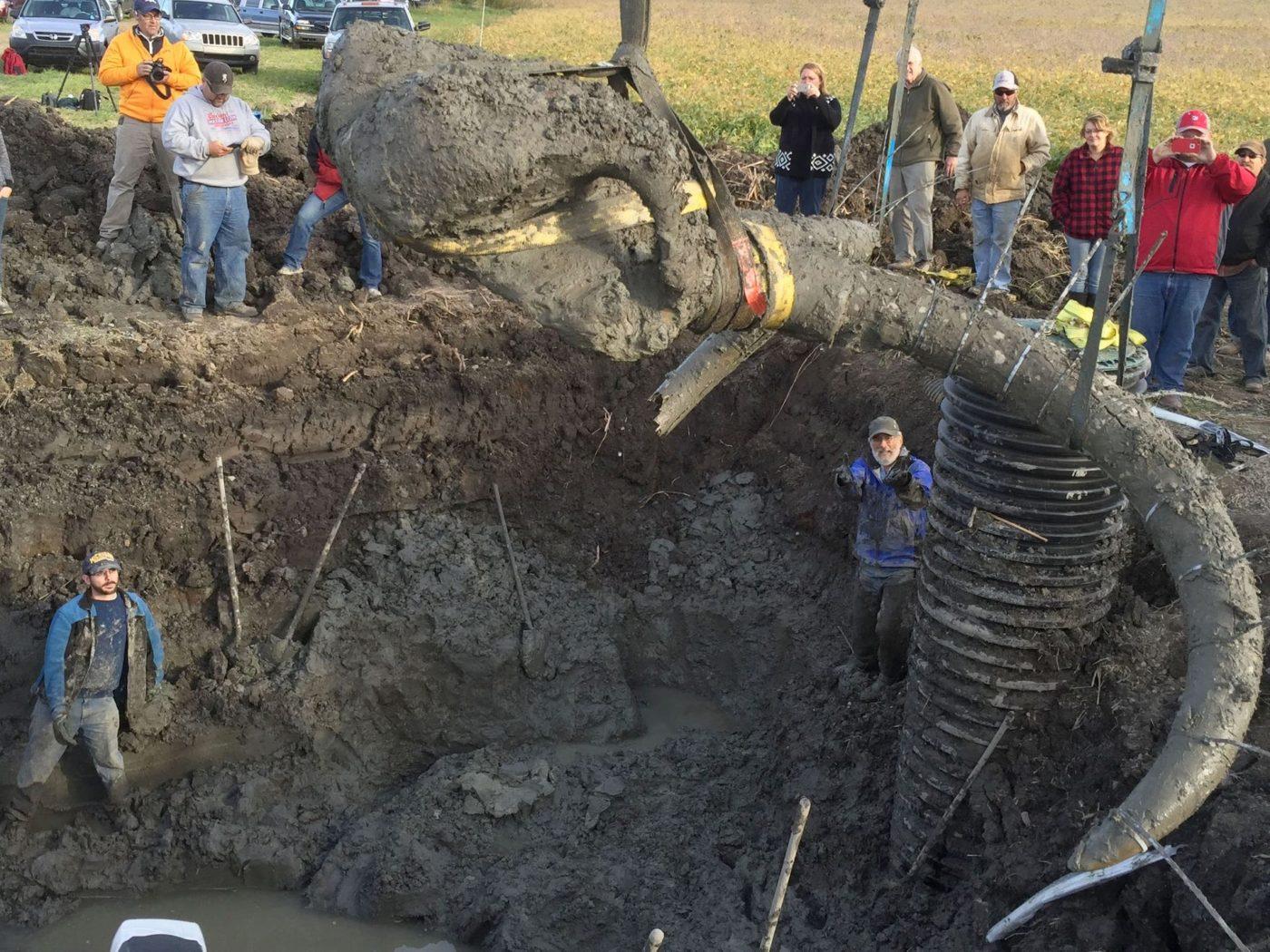 Фермер из Мичигана наткнулся на необычную находку на своей земле