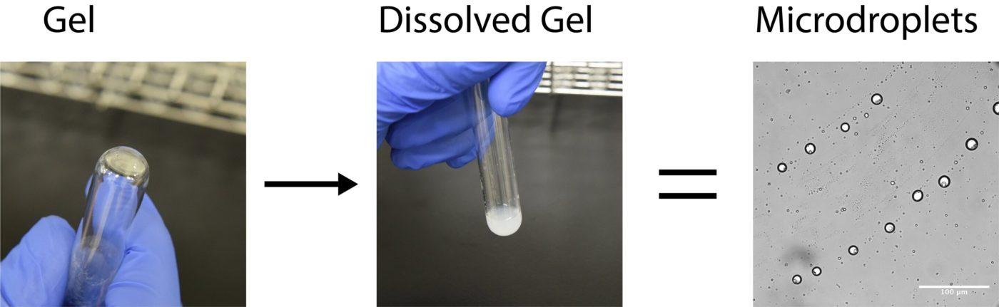 Ученые открывают новую химию, которая может помочь объяснить происхождение клеточной жизни