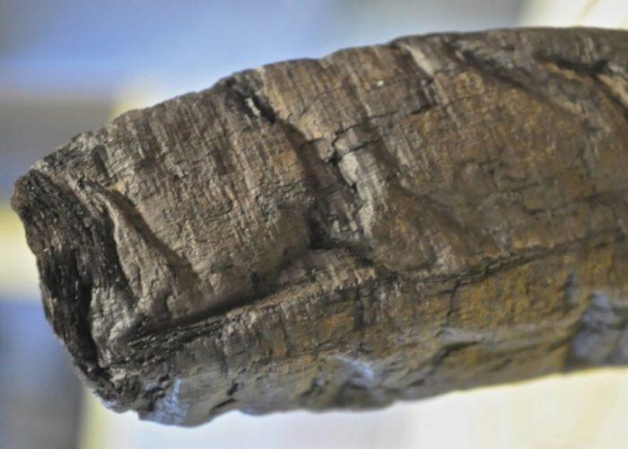 Тайны 2000-летних выжженных свитков Геркуланума будут раскрыты с помощью новой технологии