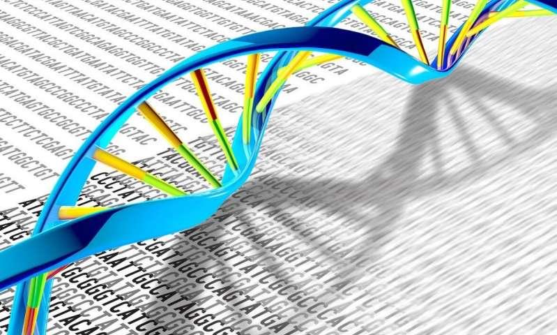 Ученые раскрывают тайну репликации ДНК