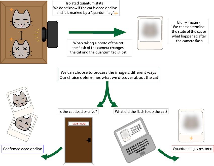 Кот Шредингера: можно ли заглянуть внутрь коробки, не изменяя ее?
