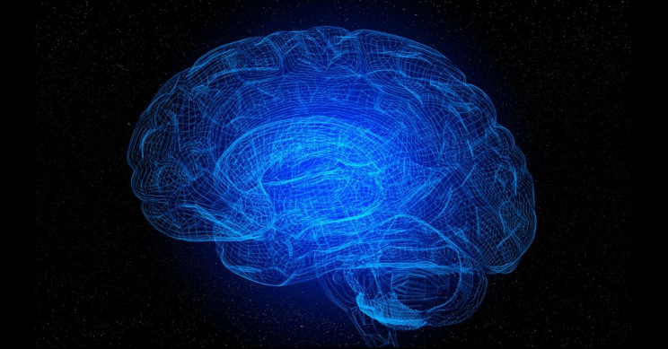 Исследования MIT доказывают, что вы можете контролировать свои мозговые волны, чтобы повысить внимание