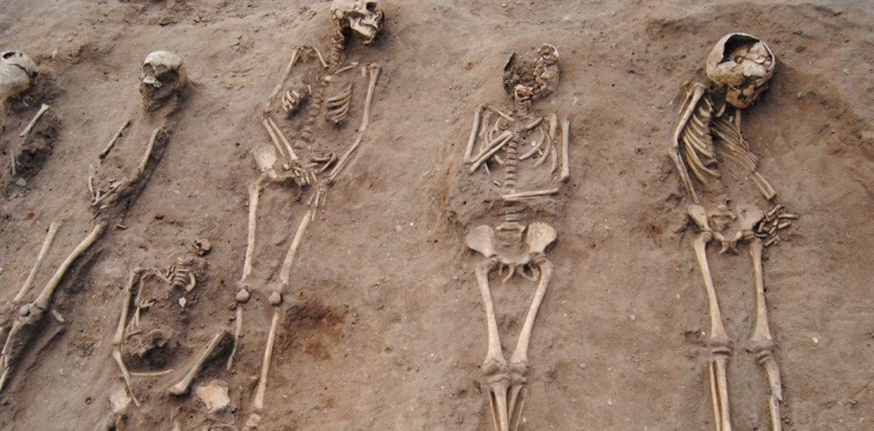 В Англии обнаружены останки жертв черной чумы