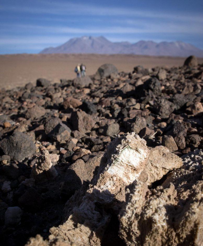 Получение воды из камня: как жизнь выживает в экстремальных условиях