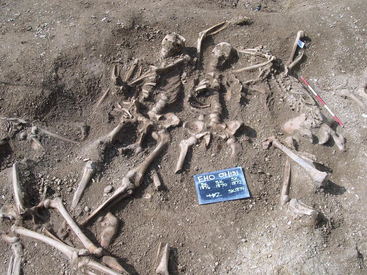 Считается, что викинги способствовали распространению вируса оспы по всей Европе