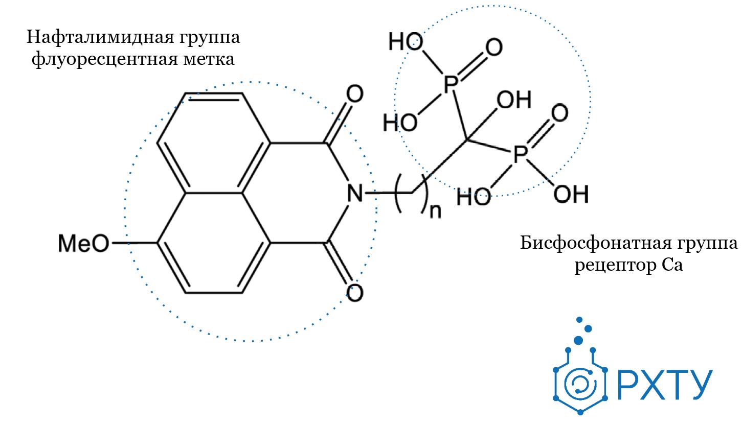 Кальций в прямом эфире. Химики создали вещества для поиска кальция в организме.