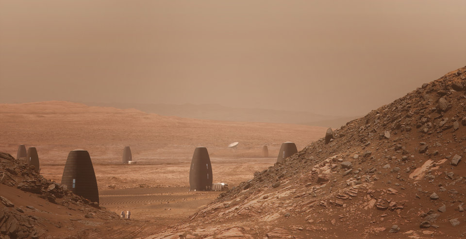 Этот гриб, обнаруженный в Чернобыле, может помочь колонизировать Марс!