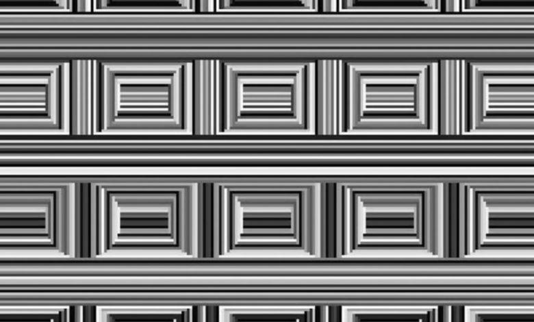 На этом изображении скрыто 16 кругов, сможете ли вы их найти?