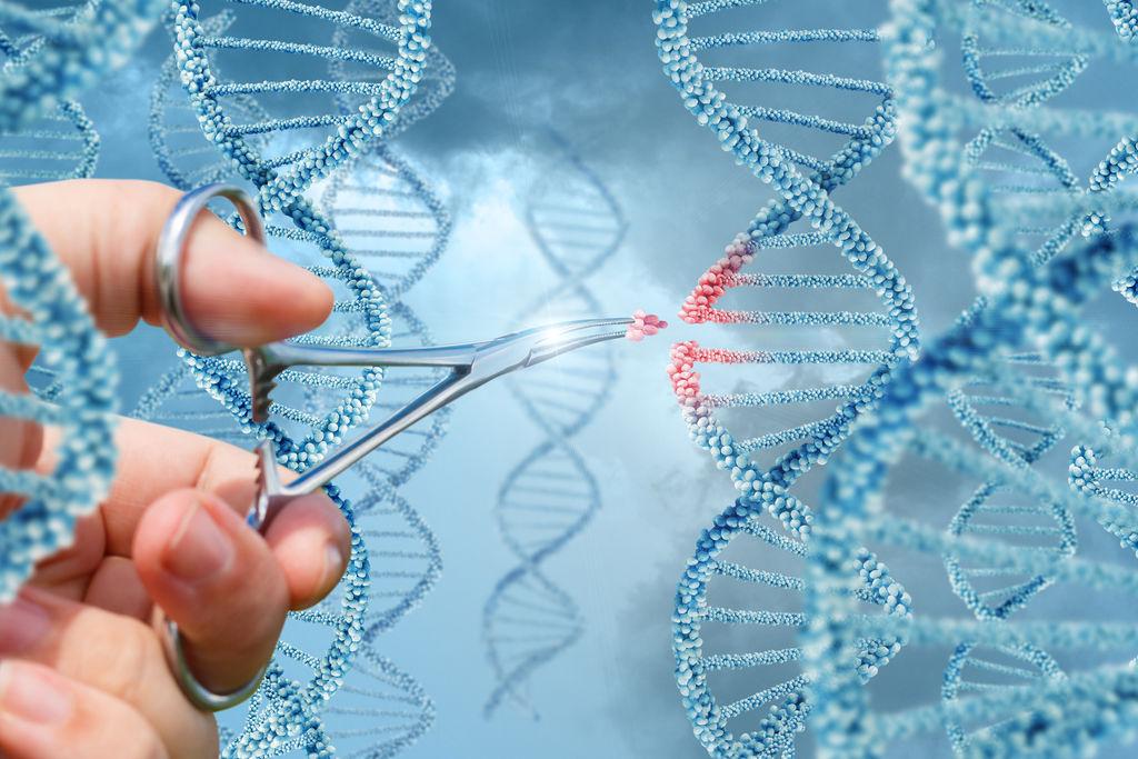 Нобелевская премия по химии присуждается двум специалистам в области редактирования генома