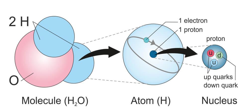 Что находится внутри атомного ядра?